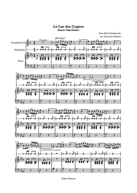 Swan Lake Act 3, No  22: Danse Napolitaine - Piano & Trumpet